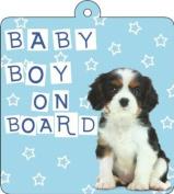 Baby Boy On Board Car Wobbler