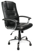 Eliza Tinsley 2008ATG/LSV High Back Leather Faced Executive Armchair with Chrome Base - Silver