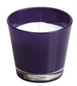 Ivyline S0560081001 90 x 80 mm Coloured Conic Glass, Purple