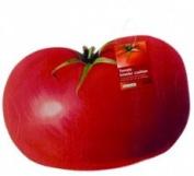 Tomato Kneeler Cushion