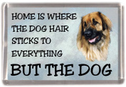 """Leonberger Fridge Magnet """"HOME IS WHERE THE DOG HAIR STICKS TO EVERYTHING BUT THE DOG"""""""