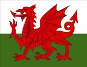 Welsh Flag Fridge Magnet