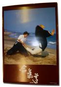 Japanese Aikido poster