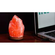 Himalayan Salt Himalayan Salt Lamp with USB plug - HSG-1137041