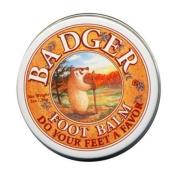 Badger Foot Balm (Peppermint & Tea Tree) [.75 oz Tin]