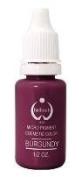 BioTouch Permanent Makeup Pigment 15ml MicroPigment Burgundy colour 06 lb