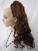 PONY TAIL HAIR EXTENSION BROWN GOLD RED MIX