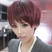 Wine Red Women Sexy Fashion Short Straight Full Hair Wig Cosplay Costume