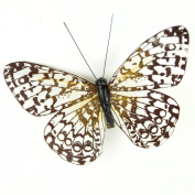 Touch of Nature 1-Piece Feather Butterfly on Clip for Arts and Crafts