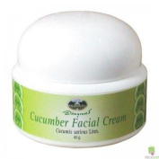 Cucumber Facial Cream with Vitamin E Product of Thailand for Special Price X2 Package