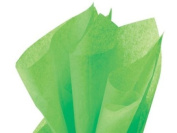 Groovy Green Tissue Paper 50cm X 80cm - 48 Sheets Pack