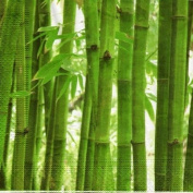 Bamboo Forest Designer Napkins