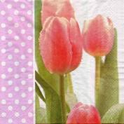 Morning Dew Tulips Designer Napkins