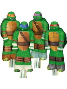 3D Ninja Turtles Pinata Assortment