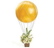 Balloon Net for Hot Air Balloon Arrangements
