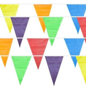 Multi-Colour 100 Ft Pennant Stringer w/48 Large Flags by Pudgy Pedro's
