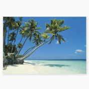 Vinyl Tropical Beach Backdrop Banner