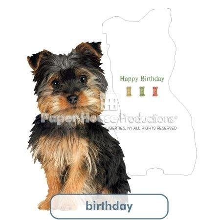 Paper House Productions Silky Terrier Birthday Card By