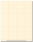 Ivory Place Cards 60/pk
