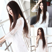 2013 Fashion Womens Brown Full Straight Style Cosplay Long Hair Wigs