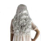New Long Wavy Silver Lady Fashion Loose Full Wig Vogue Wigs Anime Cos Wig