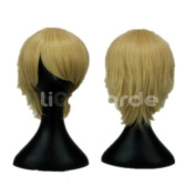 APH Vampire Knight Black Cosplay Wig Costume Wigs Two Colours