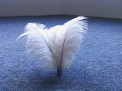50pcs New Style Real Natural 10-12 Inch(25-30cm) Ostrich Feathers Great Decorations -White