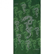 HeadCase - Dragon Green with Polar Fleece