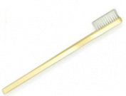 Oversized Demonstration Toothbrush