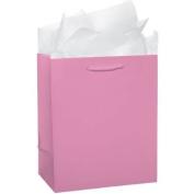 Glossy Med Pink