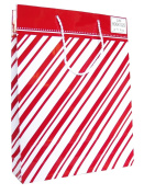 Hallmark's Red and White Candycane Striped Book Gift Bag | XGB 8961