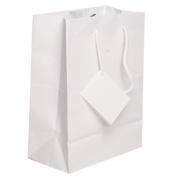 JAM Paper® Gift Bags - Medium - 20cm x 25cm x 10cm - White Matte - Sold Individually