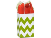 Apple Green & White Chevron Rose Paper Shopper Gift Bag - Pack of 10