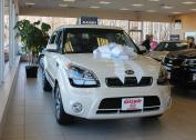80cm Magnetic Car Bows - White