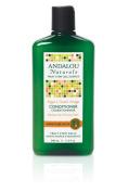 Andalou Naturals Moisture Rich Sweet Orange & Argan Conditioner 340 ml