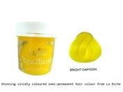 La Riche Directions Semi-Permanent Hair Colour 88ml x 2 tubs Bright Daffodil