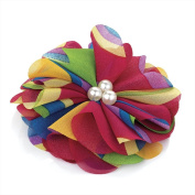 Divadoo Multi Coloured Flower Hiar Clip