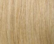 HerStyler Platinum Blonde Elite Extension Synthetic Hair Extension