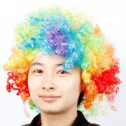 Costume Colourful Clown Afro Wig Wild Curl up Hairpiece