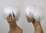 Cosplayland C1000 - Gintoki Gintama Bleach Snow White short Hair Heat-resistant Wig