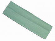 Glitz4Girlz Children's Green Wide Headband