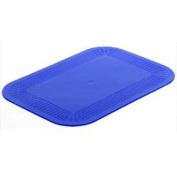 NRS Healthcare Dycem Blue Non-Slip Mat Rectangular Mat - 250 x 180mm
