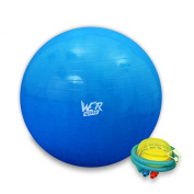 Fitness Exercise Swiss Gym Fit Yoga Core Ball 65CM Abdominal Back Workout - Blue