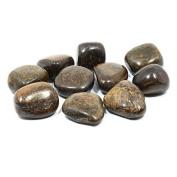 Bronzite Tumble Stone (20-25mm) Single Stone