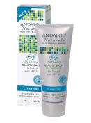 Andalou Naturals Beauty Balm Clarifying Oil Control Un-Tinted With SPF 30, Clarifying Oil Control Un-Tinted 60ml 30 SPF