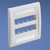 Panduit CFPE10IW-2GY 2-Gang 10-Port Faceplate, Off White
