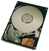 Toshiba MK8025GAS 80GB ATA/100 Internal Hard Drive