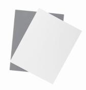 Promaster Digital Exposure Grey Card