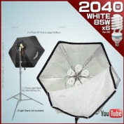 photo video studio fluoreescent cool light bank Linco Flora with softbox and Linco 85W Softwhite Daylight Photo Energy Bulb Linco#PE9030K
