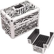 Professional Aluminium Cosmetic Makeup Nail Case